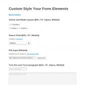 Stiliziranje elemenata forme samo s CSS-om bez JavaScript-a